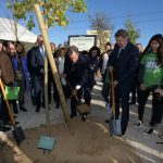 1-million-d'arbres-plantes-en-region-sud-d'ici-2021